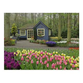 Small cottage flower shop, Keukenhof Gardens, Postcard