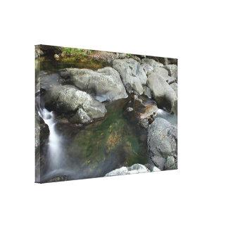 Small Creek and Rocks Queensland Australia Canvas Print