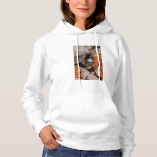 Small creek in autumn, California Hoodie