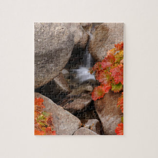 Small creek in autumn, California Jigsaw Puzzle