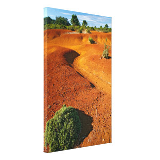 Small desert gallery wrapped canvas
