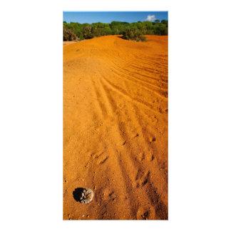 Small desert photo cards