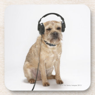 Small dog wearing headphones coaster