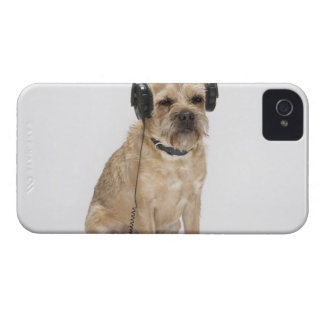Small dog wearing headphones iPhone 4 covers
