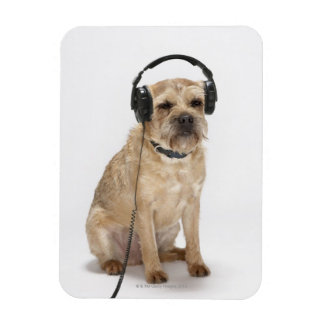 Small dog wearing headphones magnet