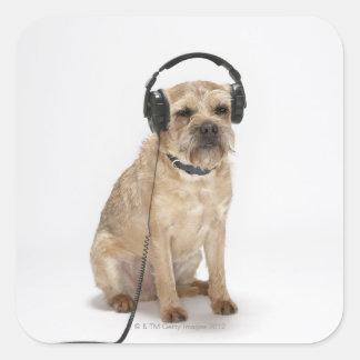 Small dog wearing headphones square sticker