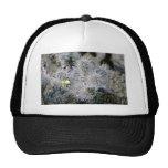 Small Flower On Cactus Trucker Hats