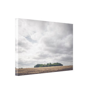 Small forest in cloudy weather canvas print