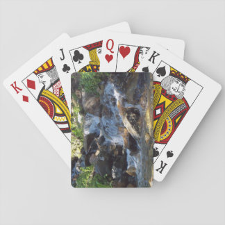 Small Forest Stream playing cards