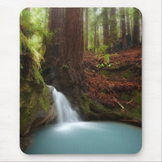 Small forest waterfall mouse pad