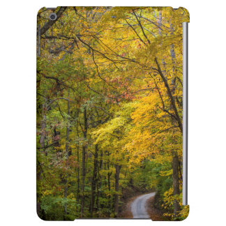 Small Gravel Road Lined With Autumn Color