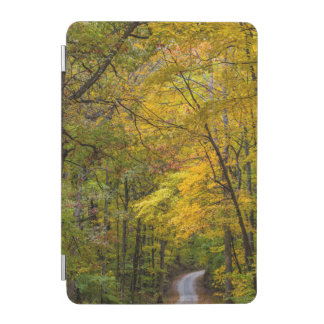 Small Gravel Road Lined With Autumn Color iPad Mini Cover