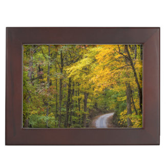 Small Gravel Road Lined With Autumn Color Keepsake Box
