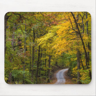 Small Gravel Road Lined With Autumn Color Mouse Mat
