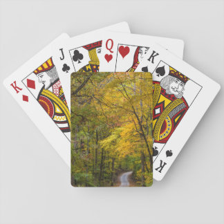 Small Gravel Road Lined With Autumn Color Playing Cards
