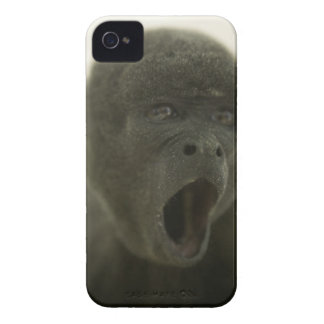 Small grey monkey, outdoors, portrait iPhone 4 covers