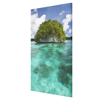 Small island in Palau, Micronesia Note the wave er Canvas Print