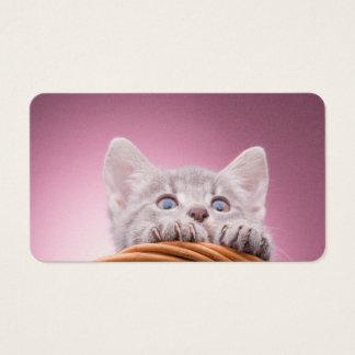 Small kitten business card