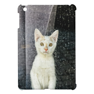 Small kitten in the window case for the iPad mini