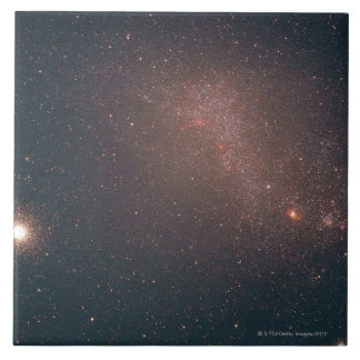 Small Magellanic Cloud Large Square Tile