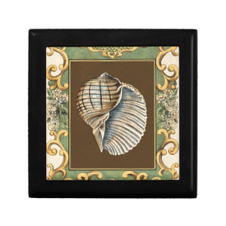 Small Mermaid's Shells Gift Box