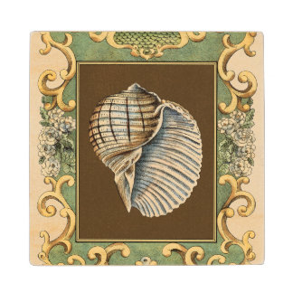 Small Mermaid's Shells Wood Coaster