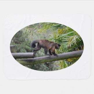 small monkey running across railing swaddle blanket