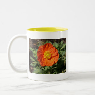 Small Orange Poppy Mug