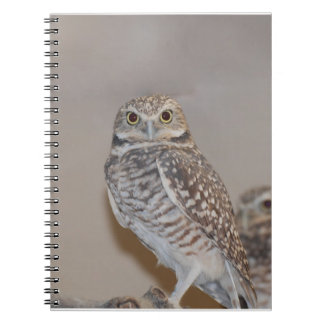 Small Owl Notebook