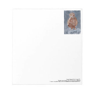 Small owl with grey background notepad