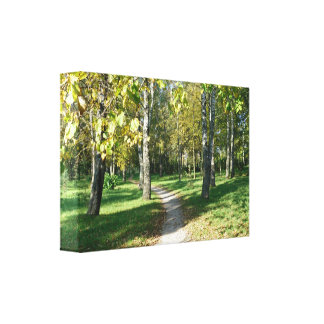 Small Path to Paradise Canvas Canvas Print