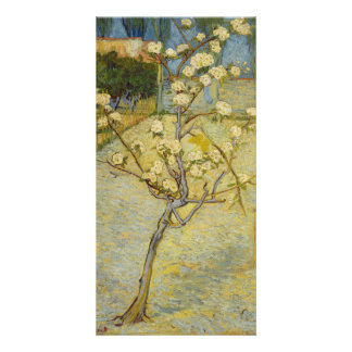 Small Pear Tree in Blossom by Vincent Van Gogh Photo Card Template