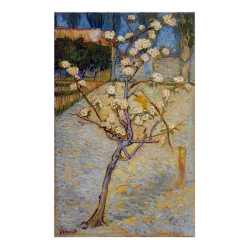 Small Pear Tree in Blossom, Vincent Van Gogh Poster