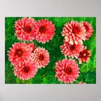 small pink dahlias painted print