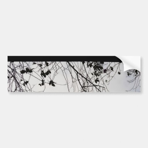 Small plant branches falling over a ledge bumper stickers