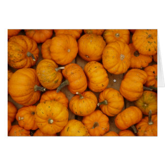 Small Pumpkins Card