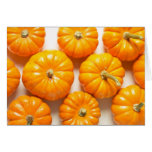 Small Pumpkins Greeting Cards