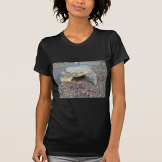 Small Rock Formation Shirt