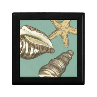Small Shell Trio on Teal Small Square Gift Box