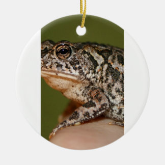 Small Toad Frog on finger against green door Round Ceramic Decoration