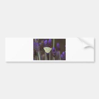 Small White and Lavender Bumper Stickers