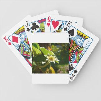 Small White Flower Poker Deck