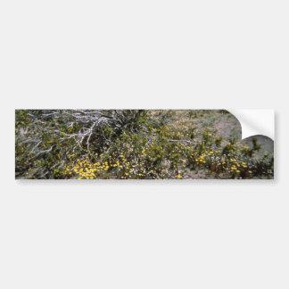 Small Wildflowers Under Brush flowers Bumper Sticker