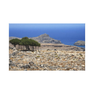 Small wood on Rhodes Stretched Canvas Print