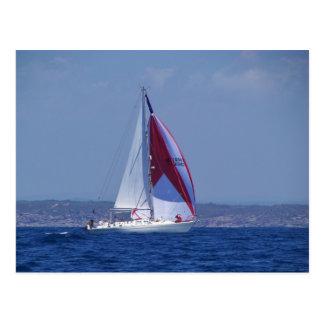 Small Yacht Setting A Spinnaker Postcard
