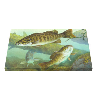 Smallmouth Bass Painting Canvas Print