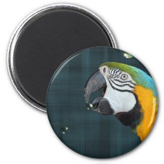 Smart Bird 6 Cm Round Magnet
