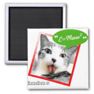 smart cat square magnet