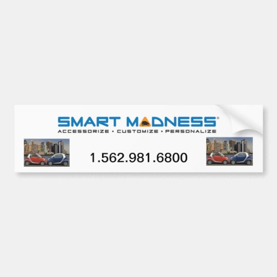 SMART MADNESS BUMPER STICKER