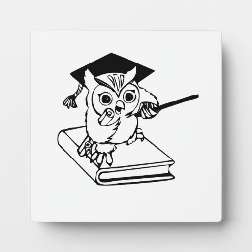 Smart Owl on Book Plaque